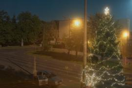 barcsi karácsonyfa